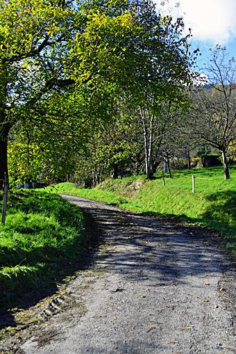 Le chemin d'accès aux gîtes de la Bresse
